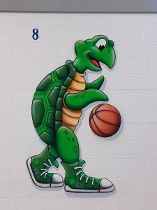 Armand-Bayou-Basketball-Turtle